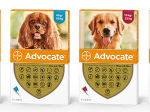 Bayer-Adovate-for-dogs-group