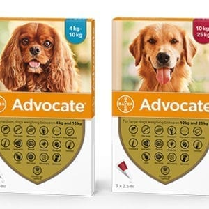 Bayer Advocate flea treatment for dogs