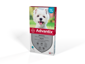 Bayer Advantix for small dogs 4kg - 10kg