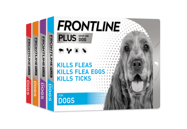 Frontline plus spot on for dogs group photo