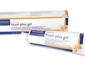 Packet of nutri plus gel for dogs and cats