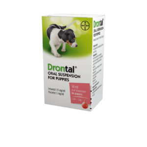 Bayer Drontal Oral Suspension for Puppies