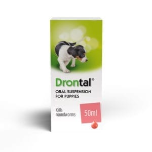 Drontal Puppy Suspension 50ml