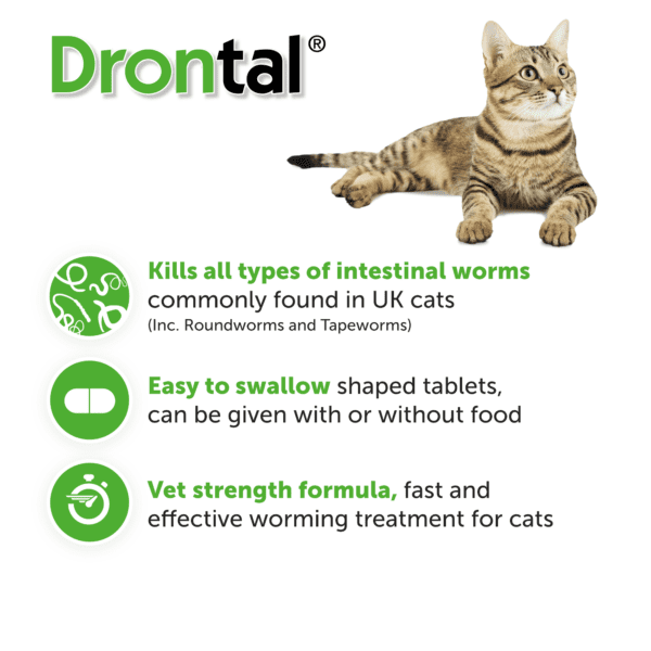 drontal cat use