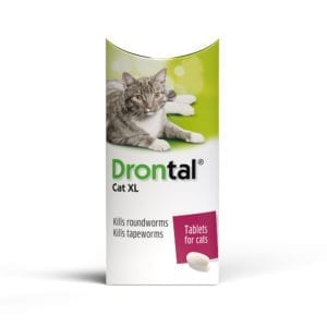 Drontal XL wormer tablet