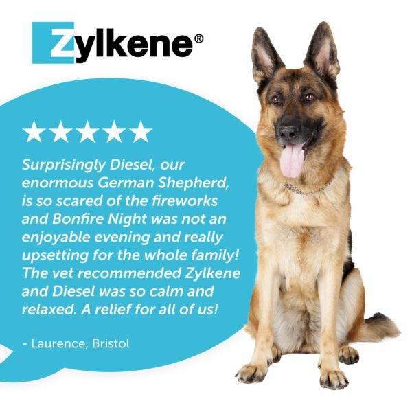 Zylkene Review