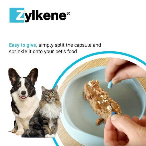 Zylkene Ways To Give