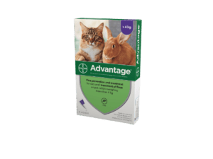 Bayer Advantage for Cats and rabbits more than 4kg