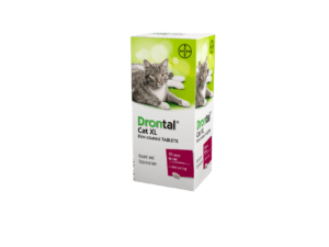 Bayer Drontal cat XL tablets x 48