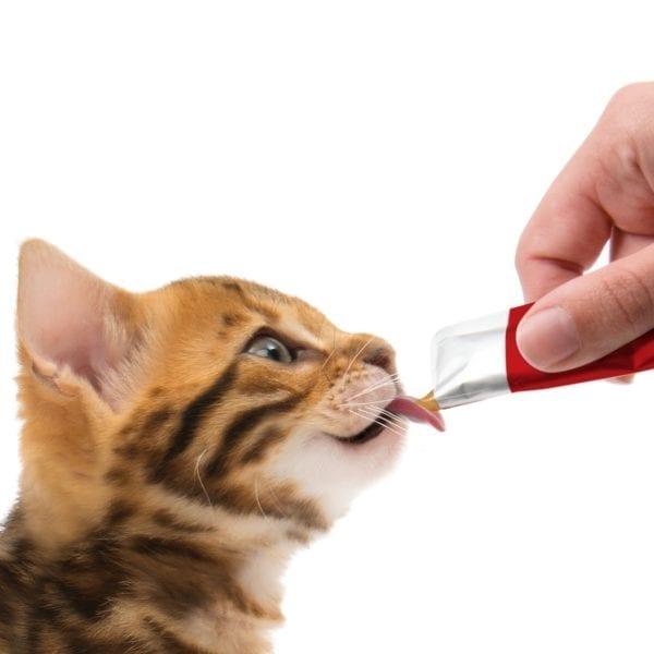 Catit Creamy Cat Treats 2